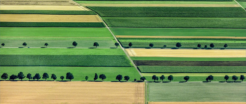 Bunge Romania – Sustainability